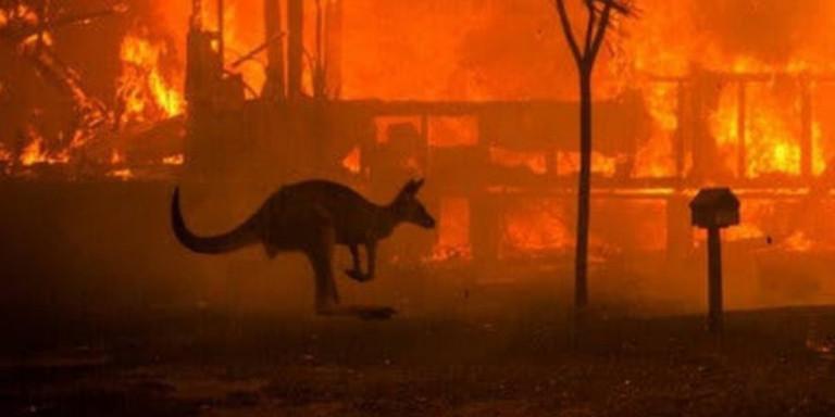 Φωτιές στην Αυστραλία: «Φύγετε γρήγορα!» -Εγκαταλείπουν άρον άρον τα σπίτια, στους 26 οι νεκροί