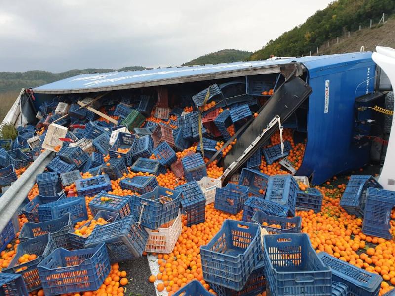 Τα τελάρα με τα πορτοκάλια