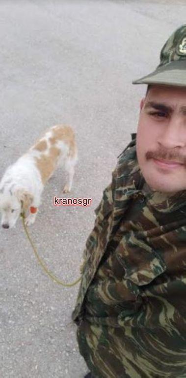 Γιάννενα: Στρατιώτες σώζουν σκύλο από χτύπημα αυτοκινήτου και βέβαιο θάνατο - Εικόνα 3